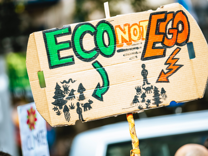 "hand-painted cardboard sign that says ""ECO NOT EGO"" with drawings of nature and people destroying it"